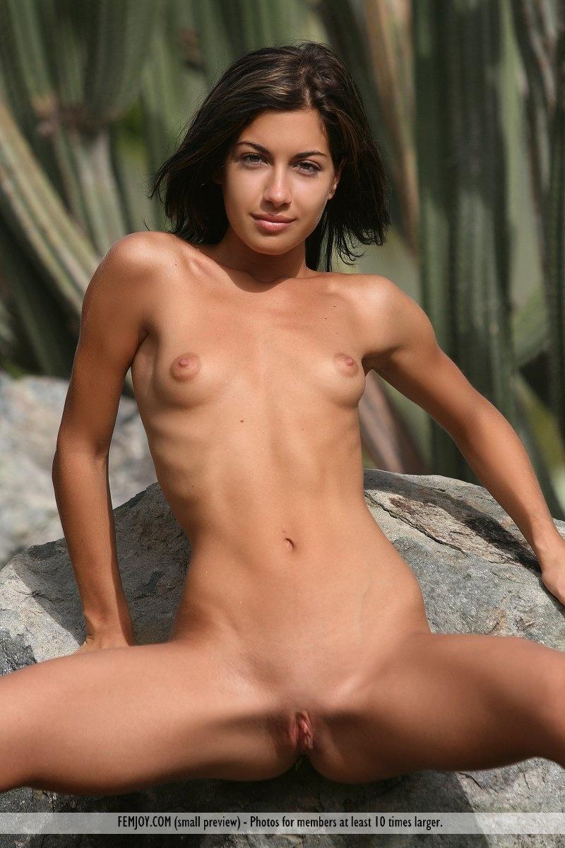 Hard Body Babes Nude