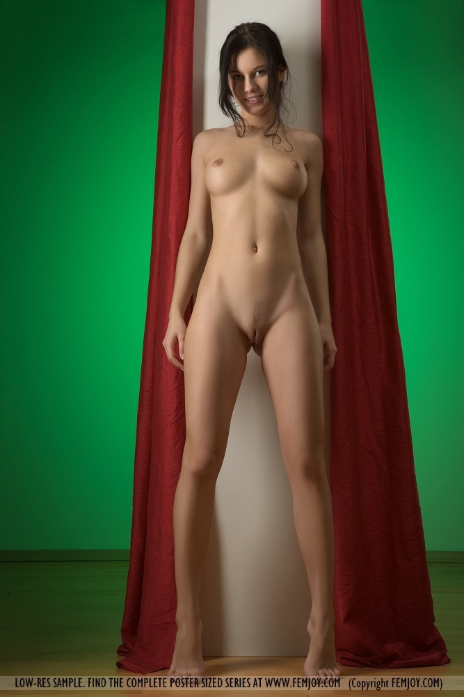 erotikom   amp femjoy pure nudes present the beautiful